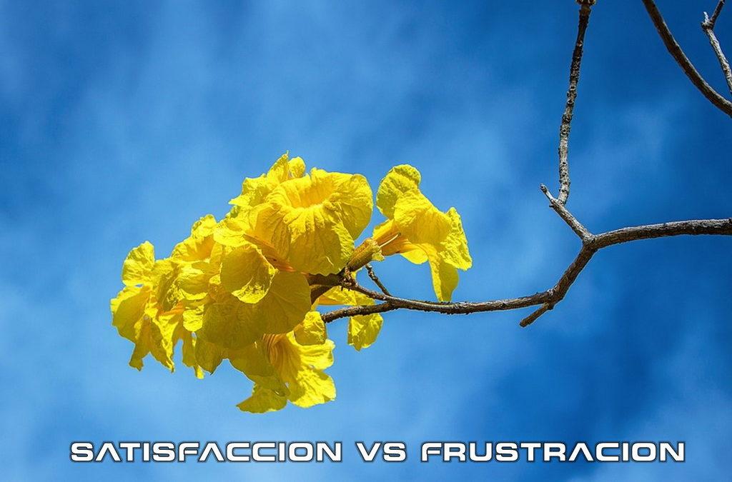 SATISFACCIÓN VS. FRUSTRACION